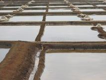 Salt salt extraction food industry India Stock Photos
