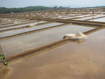 Salt salt extraction food industry India. Baths with salt salt extraction food industry India, Karnataka, Gokarna, March, 2017 royalty free stock photography