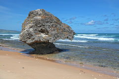 bathsheba海滩 免版税库存图片