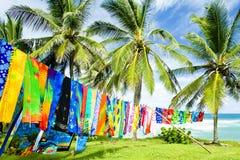 bathsheba Барбадосских островов Стоковое Фото