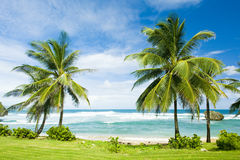 Bathsheba Royalty Free Stock Photo