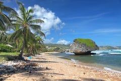 巴布达bathsheba海滩 免版税图库摄影