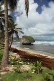 Bathsheba, Barbade Photos libres de droits