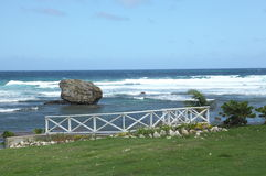 Bathsheba, Barbade Photo stock