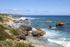Bathsheba, Barbade Photos stock