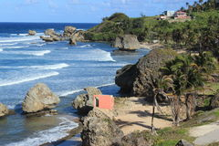 Bathsheba, Barbados Fotografia Stock