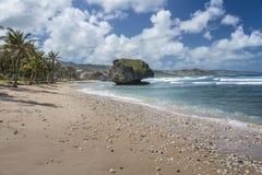 Bathsheba, Barbados, de Antillen Stock Afbeelding