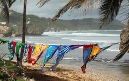 Bathsheba, Barbados Stock Image