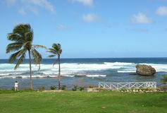 Bathsheba, Barbados Royalty Free Stock Photography