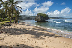 Bathsheba Barbados West Indies Royalty-vrije Stock Foto