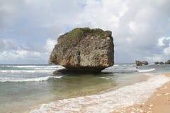 Bathsheba Beach vaggar - Barbados Arkivbilder