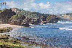 Bathsheba na wschodnim wybrzeżu wyspa Barbados Obraz Royalty Free