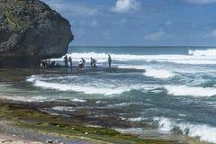 Bathsheba Pools, Barbados, le Antille Fotografia Stock