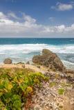 Bathsheba Rock, View to the Beach and Natural Park Stock Photos