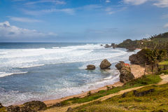 Bathsheba Rock, View to the Beach and Natural Park Stock Images