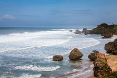Bathsheba Rock, View to the Beach and Natural Park Stock Photography