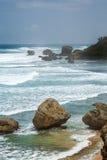Bathsheba Rock, View to the Beach and Natural Park Royalty Free Stock Photo
