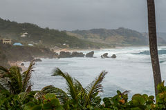 Bathsheba Rock, View to the Beach and Natural Park Royalty Free Stock Image