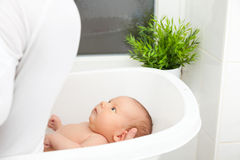 Bathtime for a cute little newborn Royalty Free Stock Photos