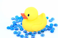 Bathtime duckie. Rubber duckie with water marbles Stock Photos