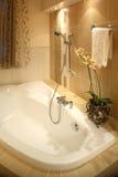 Bathtub Royalty Free Stock Images