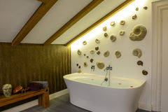 Bathtub with flower petals royalty free stock photos