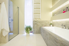 Bathtub and shower. In spacious luxury bathroom Stock Photo