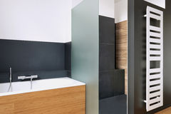 Bathtub and shower in tiled bathroom. With vertical radiator Stock Images