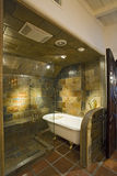 Bathtub And Tiled Walls Through Screen Glass Door Royalty Free Stock Photo