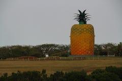 Bathurst la provincia del Capo Orientale Sudafrica Fotografia Stock Libera da Diritti