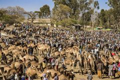 Bati marknad, Etiopien arkivfoto