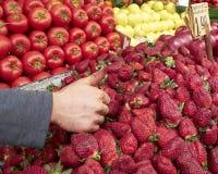 Batida-acima! Uma festa das frutas e verdura Imagem de Stock