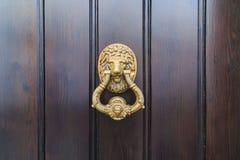 Batida principal da porta do le?o em uma porta de madeira nova velha em Malaga, Espanha imagens de stock
