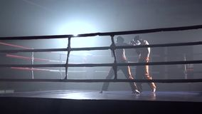 Batida profissional de dois kickboxers dos indivíduos com seus pés e mãos Movimento lento video estoque