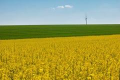 Batidas das rodas de vento Imagem de Stock Royalty Free