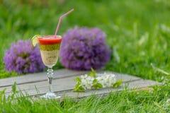 Batido de fruta nos vidros de vinho de vidro Imagem de Stock