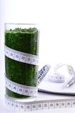 Batido dos espinafres Dieta e desintoxicação Fotografia de Stock
