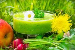 Batido verde Foto de Stock Royalty Free