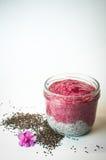 Batidos úteis do iogurte com sementes do chia Foto de Stock Royalty Free
