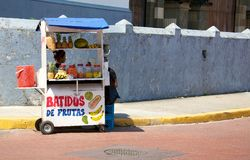 Batidos Royalty Free Stock Photography