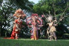 Batik rojo Foto de archivo libre de regalías