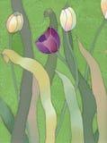 Batik tulips background Stock Photos