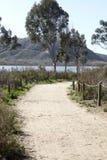 Batiquitos lagunslingor som omger sjön Arkivfoto
