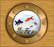 Batiskaf gold window aquarium Royalty Free Stock Photo