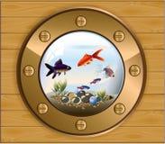 Batiskaf złocisty nadokienny akwarium ilustracji