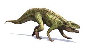 Batrachotomus dinosaurie Fotografering för Bildbyråer