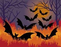 bats ад вне Стоковое Изображение RF