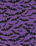 bats безшовное Стоковое Изображение