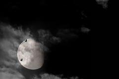 Bats on 3/4 full moon royalty free stock image