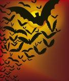 Bats Royalty Free Stock Image